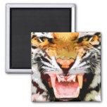 Angry Tiger - Eyes of Tiger Fridge Magnets