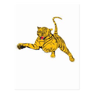 Angry Tiger Postcard