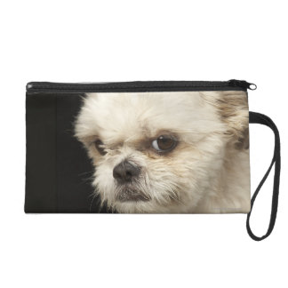 Angry white Shih Tzu with brown eyes Wristlet