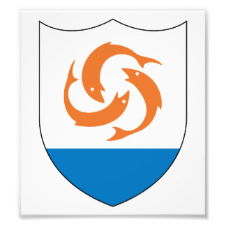 Anguilla Coat Of Arms Photographic Print