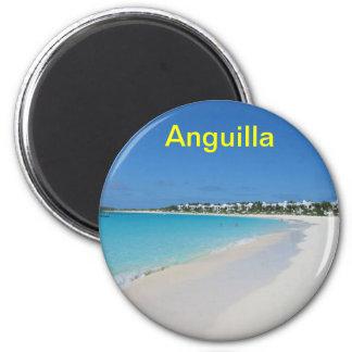 Anguilla magnet