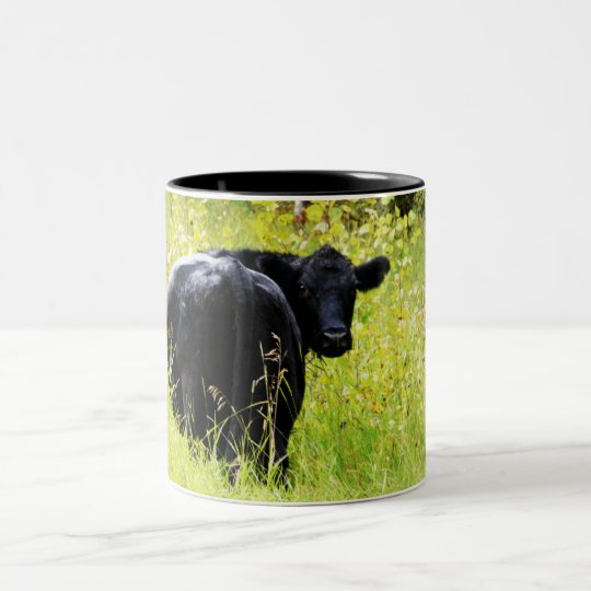 Angus Steer in Tall Yellow Grass Two-Tone Coffee