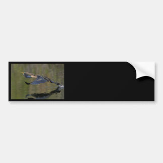 anhinga bumper stickers