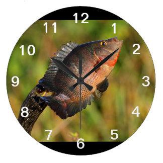 anhinga displaying a colorful fish wall clocks