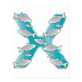 Animal Alphabet X-Ray Fish Postcard