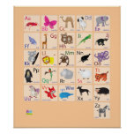 Animal Alphabets Posters