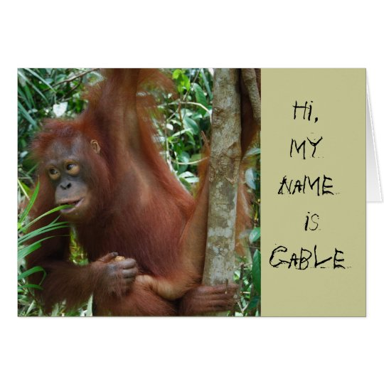 Animal Artists Card