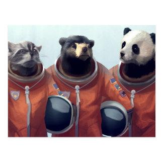 Animal Astronauts Postcard