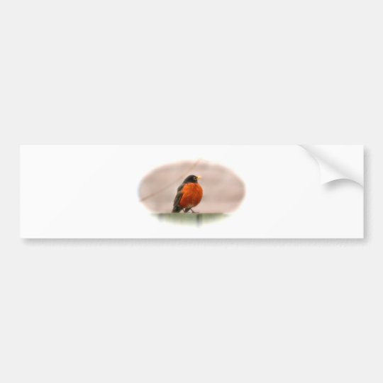 Animal Bird American Robin Bumper Sticker