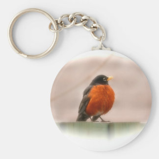 Animal Bird American Robin Key Ring