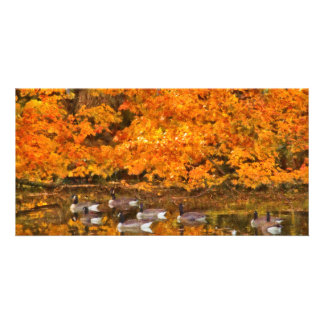 Animal - Canadian Geese Personalized Photo Card