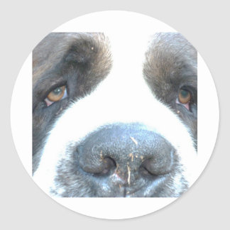 Animal Classic Round Sticker