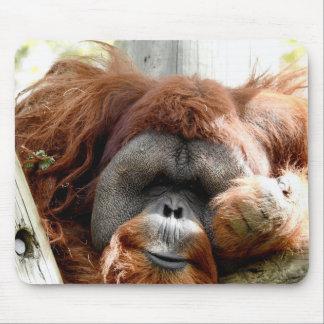Animal Collection - Red Orangutan Mouse Mat