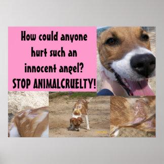 Animal Cruelty Poster
