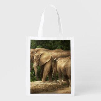 Animal - Elephant - Tight knit family