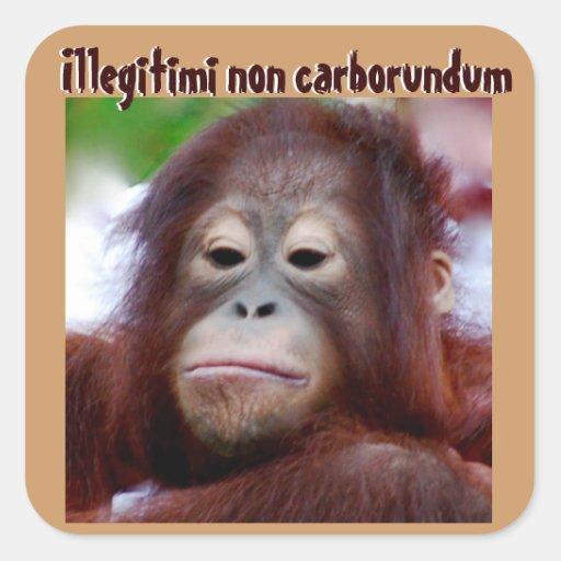 Animal Faces: Illegitimi non carborundum Square Stickers
