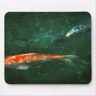 Animal - Fish - Koi - Another fish story Mouse Pad