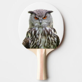Animal forest owl bird photo ping pong paddle