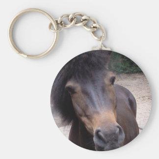 Animal, Horse, Pony Key Ring