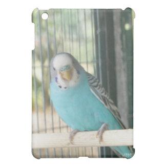 Animal Kingdom HD iPad Case - Blue Bird