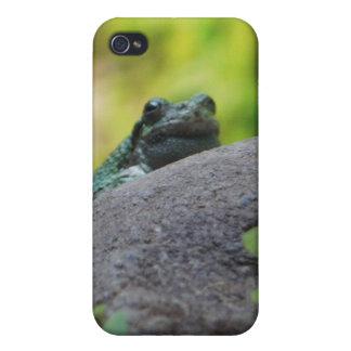 Animal Kingdom HD iPhone 4 Case - Frog