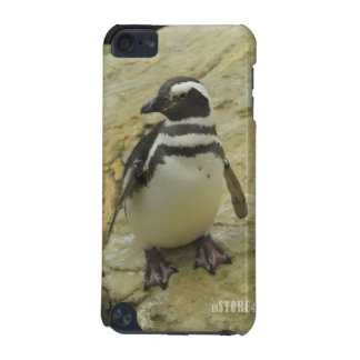 Animal Kingdom HD iPod Touch Case - Penguin