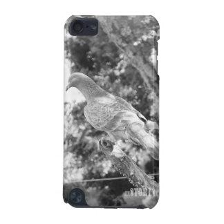 Animal Kingdom HD iPod Touch Case - Pigeon