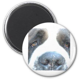 Animal 6 Cm Round Magnet