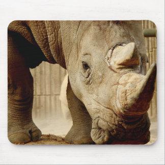 Animal Mousepad Series - Rhinoceros