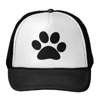 Animal Paw Cap