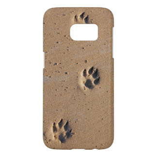 Animal paw prints in the sand