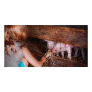 Animal - Pig - Feeding piglets Photo Greeting Card