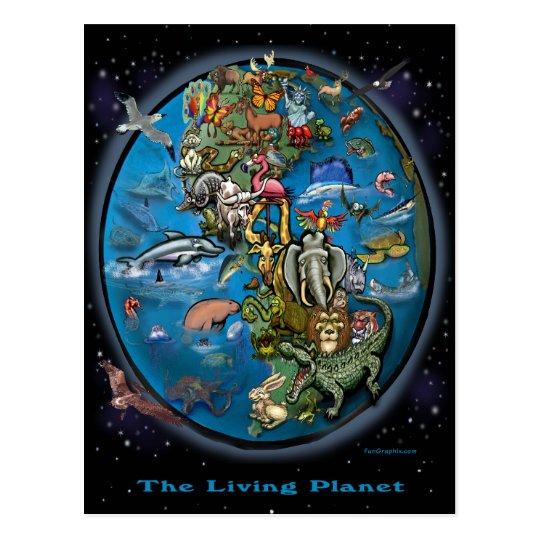 Animal Planet Postcard