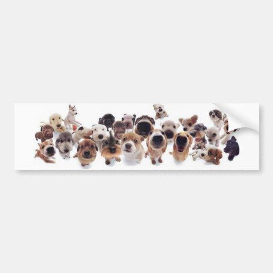 Animal Print Bumper Sticker