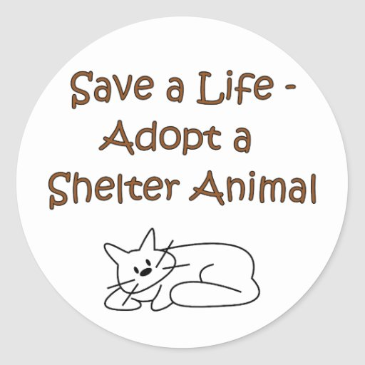 Animal Rescue/Adoption Shelter Cat Stickers