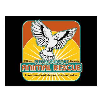 Animal Rescue Bird Postcards