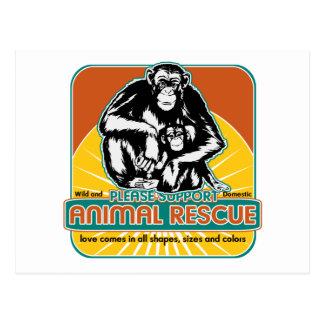 Animal Rescue Chimpanzee Post Card