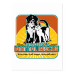 Animal Rescue Dog and Cat Postcard