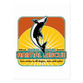 Animal Rescue Dolphin Postcard