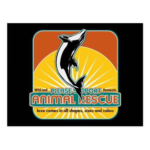 Animal Rescue Dolphin Postcards