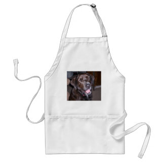 Animal rescue products standard apron