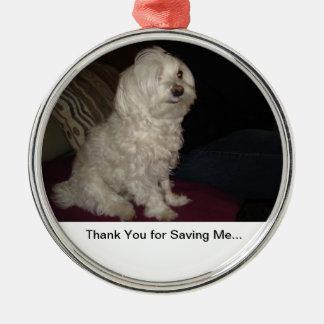 Animal Rescue Silver-Colored Round Decoration