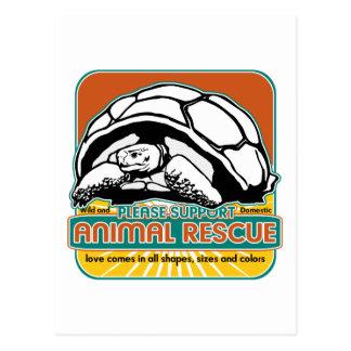 Animal Rescue Turtle Postcard