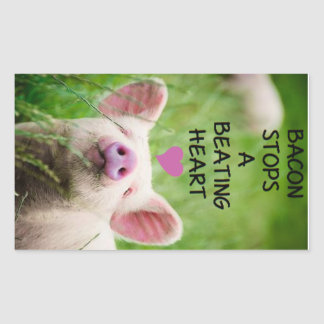 Animal rights sticker. rectangular sticker