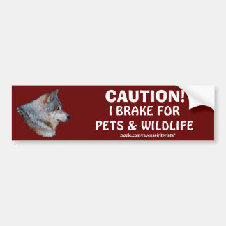 ANIMAL SAFETY Bumper Sticker Collection