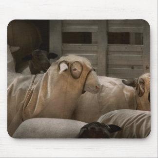 Animal - Sheep - The Order Mousepads