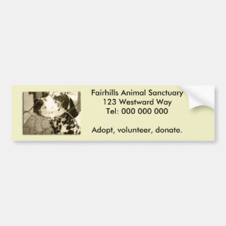 Animal Shelter Gifts and Stationery Car Bumper Sticker