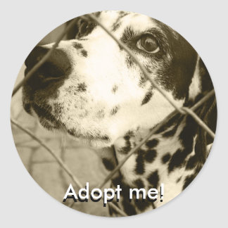 Animal Shelter Gifts and Stationery Round Sticker