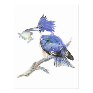 Animal Totem, Spiritual, Inspiration Encouragement Postcard