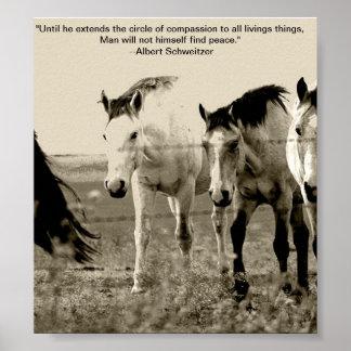 Animal welfare poster III